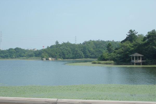 牧野池の風景
